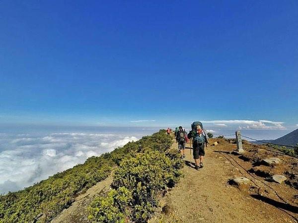 Jalur Pendakian Gunung Gede