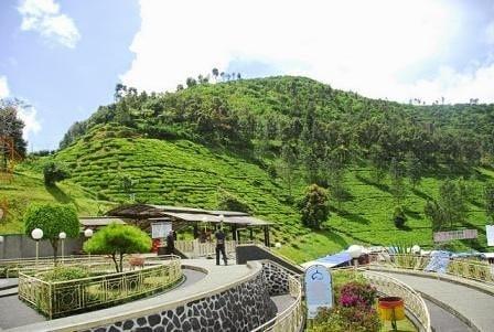 Taman Riung Gunung Cisarua